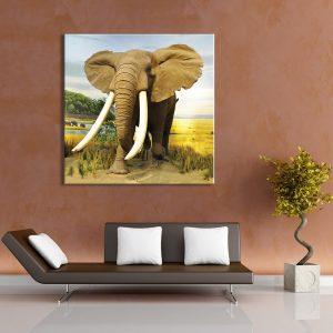 Muurdecoratie met foto op canvas van olifant