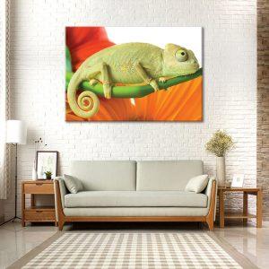 Muurdecoratie met canvas foto van iguana