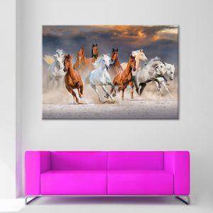 Muurdecoratie met canvas foto van paarden