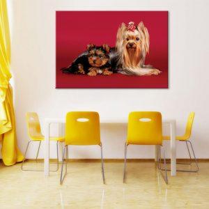Muurdecoratie met foto op canvas van 2 honden