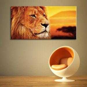 Muurdecoratie met Foto op canvas van Leeuw