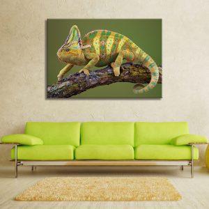 Muurdecoratie met canvas foto van reptiel iguana