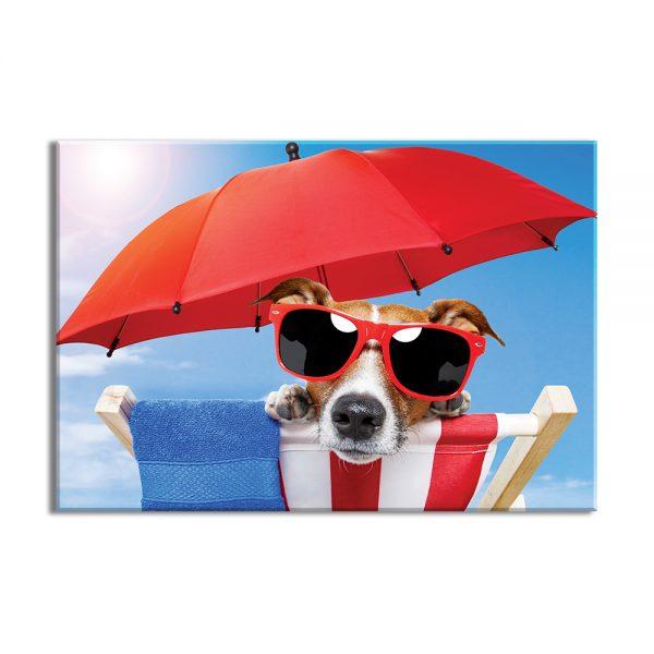 Canvas foto van hond onder de paraplu