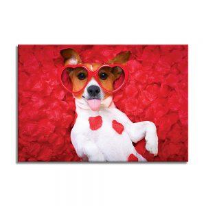 Hond op canvas foto