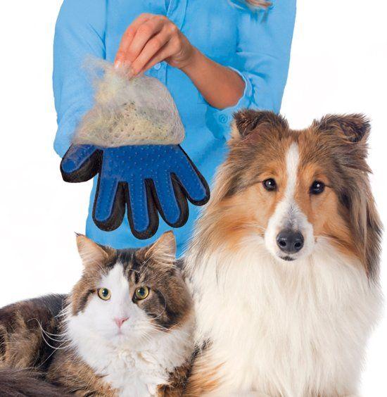 Vacht verzorging hond kat